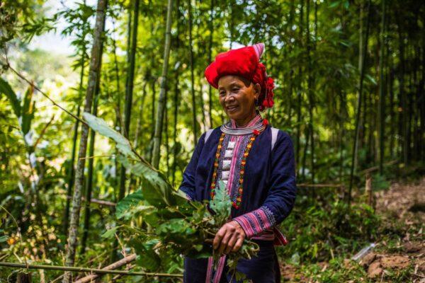 Red Dzao Lady