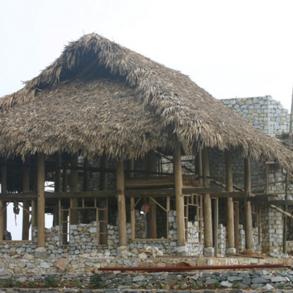 Building the stilt house
